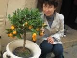 Однофамилец Соколова - женщина 63 года